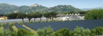 SARZANA : Sestri Levante-Livorno  A-12